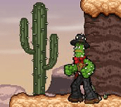 Hra - Cactus McCoy