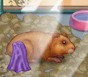 Hra - My Tiny Hamster