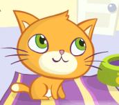 Hra - KittySlacking