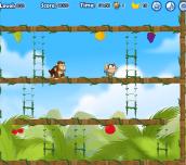 Hra - MonkeyinTrouble