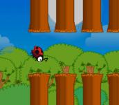 Hra - FlyLadyBird