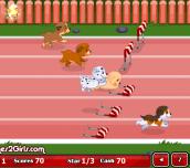 Hra - Puppy Racer