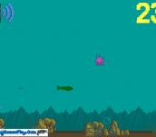 Hra - Fish Life