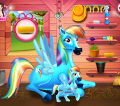 Hra - Rainbow Dash Pony And The Newborn Baby