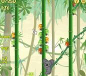 Hra - Koala vs Bugs