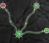 Hra - Tentacle Wars