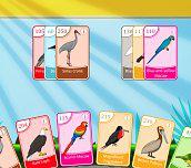 Hra - Bird Pax