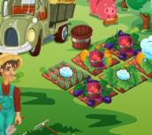 Hra - Farmersmarket