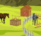 Hra - Farm Field Deco
