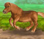 Hra - My Dear Pony