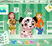 Hra - Pet Beauty Corner