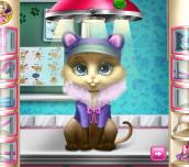 Hra - KittyRescueVet