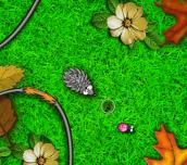 Hra - Hungry Hedgehog