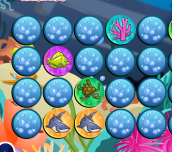 Hra - SeaLifeMemo