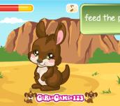 Hra - KangarooCare