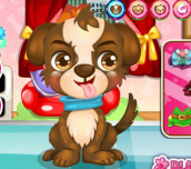Hra - CuteBabyPuppyCare